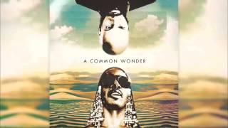 Stevie Wonder & Common - A Common Wonder (Full Album) [HD]