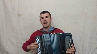 GAYAZOV'S BROTHER'S ЧЁРНАЯ ПАНТЕРА КАВЕР НА БАЯНЕ