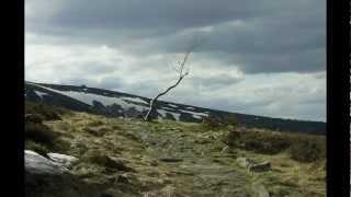 Northaunt - Barren Land