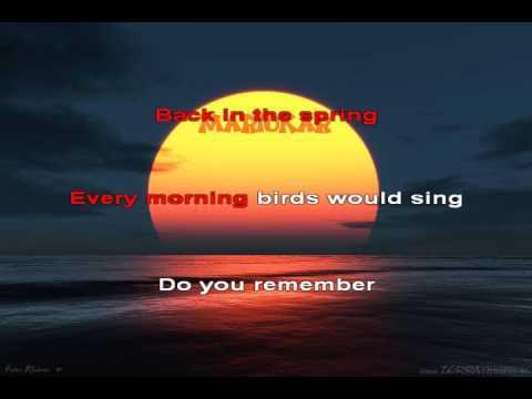 Michael Jackson   Remember the time karaoke