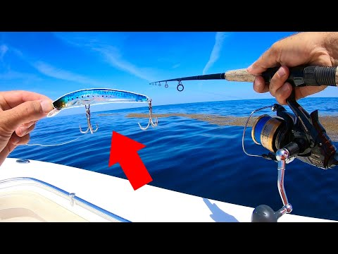 Lure Catches Offshore GIANT! Personal Record!