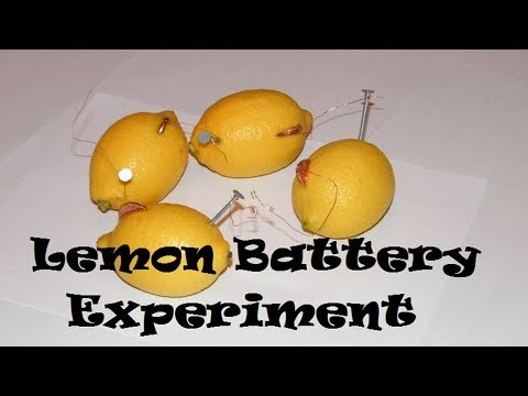 Lemon Battery Light Bulb Experiment