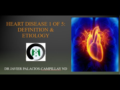 Heart Disease: Definition & Etiology | Naturopathic Medicine | The Zen Palace of Healing