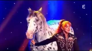 شاهد ذكاء هدا الحصان الجميل روعة