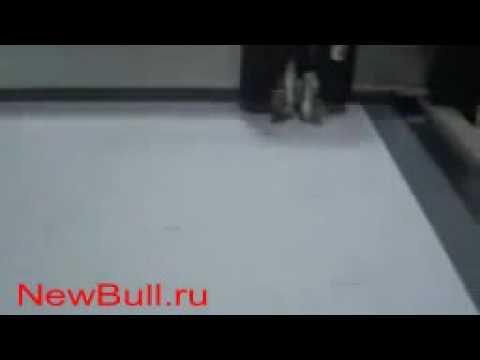 Планшетный режущий плоттер DCZ в процессе резки PET ПВХ лекала для .