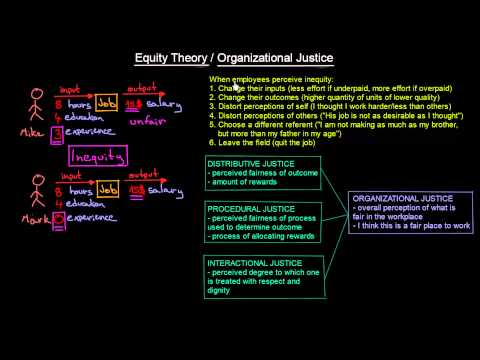 Equity Theory and Organizational Justice | Organisational Behavior | MeanThat