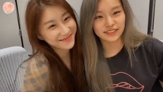 Download lagu ITZY BEING GAYS MOMENT!!