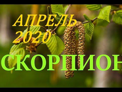 СКОРПИОН. АПРЕЛЬ 2020г. ПРОГНОЗ. САМОЕ ВАЖНОЕ ДЛЯ ВАС !!!