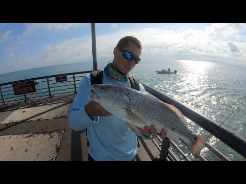Redfish on the Rocks (Catch Clean Cook) +Lobster Diving!