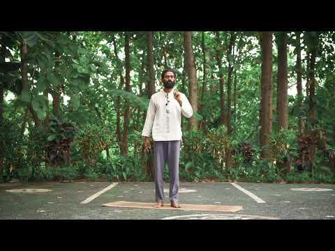 Parivritta Trikonasana - Revolved Triangle Pose Alignment