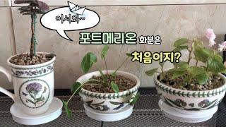 식물VIog Ep.22…