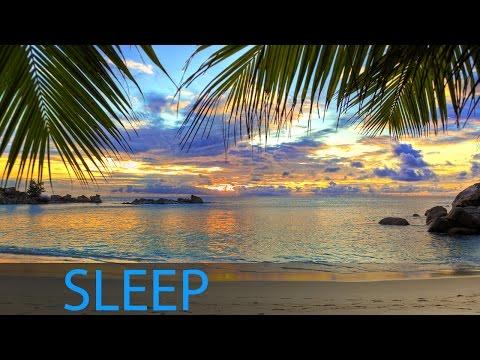 3 Hour Dream Music: Relaxing Deep Sleep Music, Meditation Music, Sleep Meditation ☯376