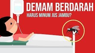 Waspada! Lebih dari 16.000 Kasus Demam Berdarah Berjangkit di Indonesia.