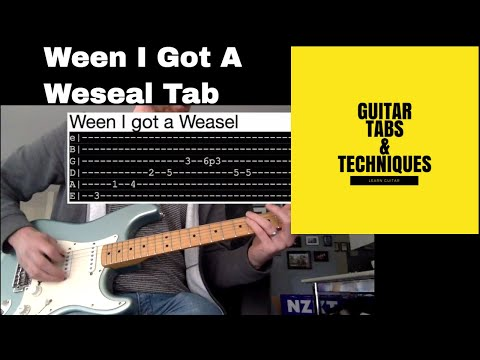 Ween I got a Weasel Guitar Lesson Tutorial With Tabs GodWeenSatan