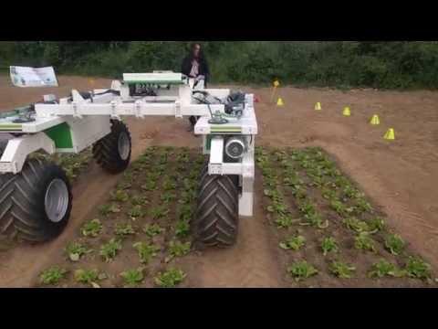 Robot agricole enjambeur Dino : ses premiers tours de roues