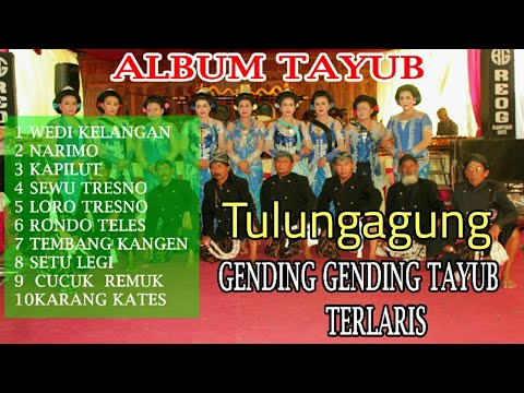 Download Mp3 Tayub Tulungagung Setyo Pradonggo
