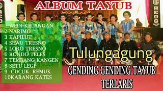 Download Lagu Tayub Tulungagung -Album Terlaris -  MP3 mp3