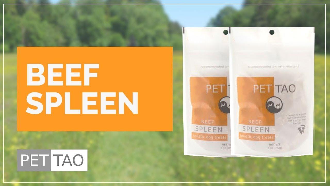 Restore Spleen Energy With Beef Spleen Treats - TCVM Food