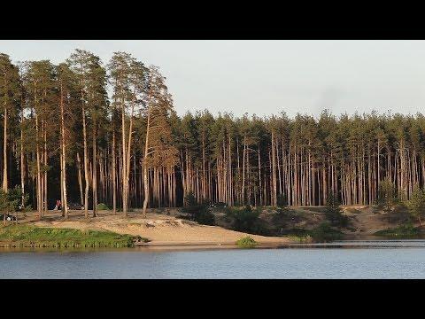 Река Нерская #1. Куровское озеро на Нерской