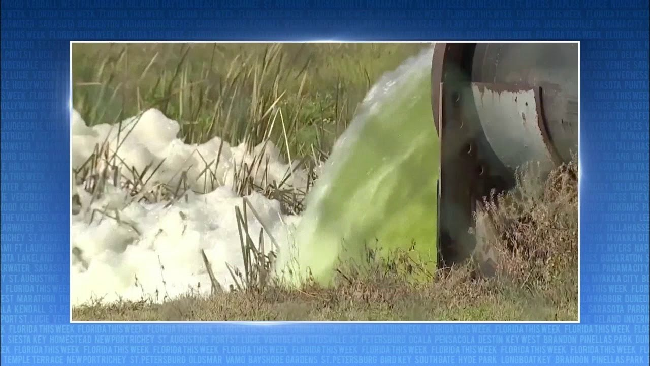 Piney Point Toxic Wastewater | Florida This Week