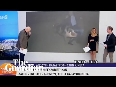Kathi Yeager - Renegade Pig Chases Journalist During Live News Broadcast in Greece