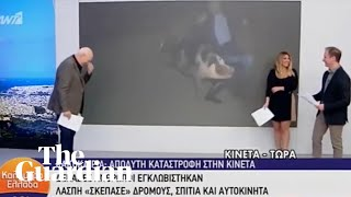 Escaped pig chases journalist during live news broadcast in Greece