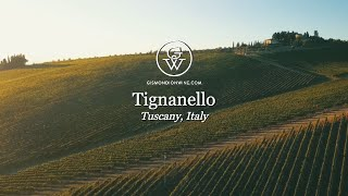 An Italian Adventure: TIGNANELLO