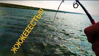 ЖеСТь 40 Кг КАЙФА Рыбалка не для СЛАБОНЕРВНЫХ Цимла 2021 Ловля СОМА НА КВОК