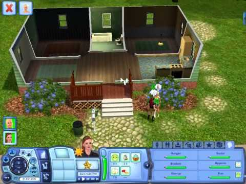 Best Sims 3 Cheats for PC