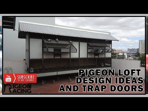 PIGEON LOFT DESIGN IDEAS