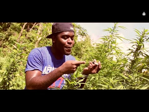 Wiseman - So High (Official Music Video HD)