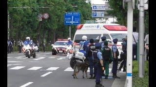 【G20】救急車と安倍総理車列が交差点に!! 白バイ電光石火の出動!! Motorcade of Japanese P.M