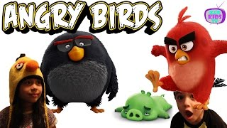 angry birds sling and smash with red bomb and terence   kd kids tv