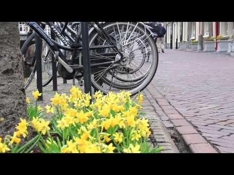 Escorted Tour of Holland - The Camping and Caravanning Club
