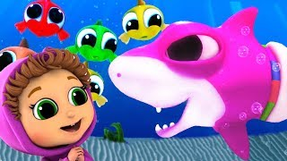 Baby Shark | Best 20 Minutes of Kids Songs