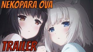 NEKOPARA Anime OVA Trailer【ネコぱらOVA  PV 】