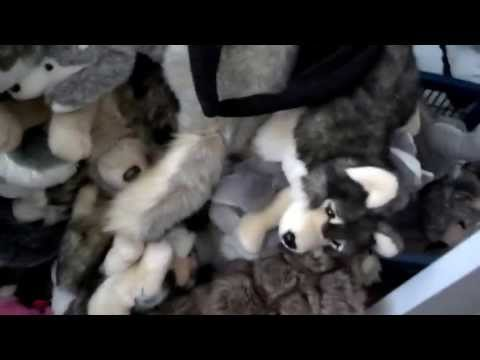 Full wolf plush collection updated