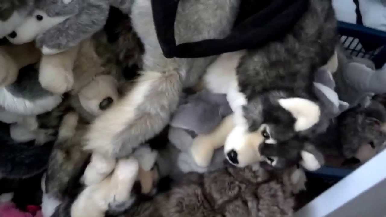 Full Wolf Plush Collection Updated Youtube