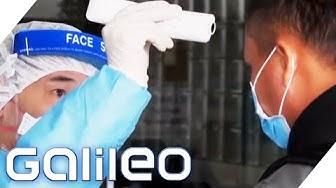 Corona, Ebola & Co. - Die Aufgaben der Weltgesundheitsorganisation WHO | Galileo | ProSieben