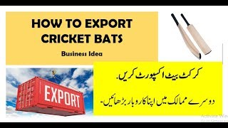 How to Export Cricket Bats to USA - Corival Sports