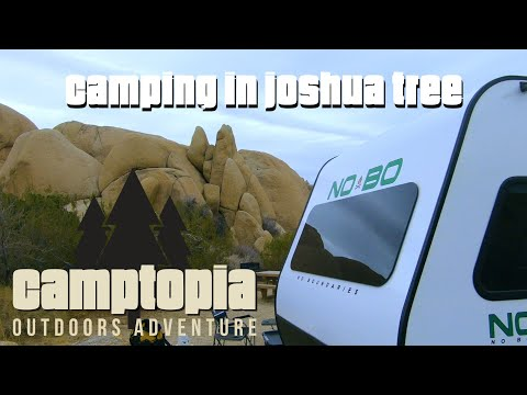 joshua-tree-national-park-my-first-time