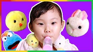 파랑이가 아기 병아리를 잡아 먹어요! 귀여운 애완동물 부르르 토끼와 병아리 장난감 놀이 LimeTube & Toy 라임튜브