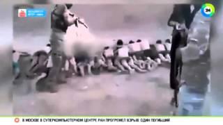 Новости казни Игил, 200 сирийских детей было растреленно