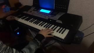 На синтезаторе в мире животных