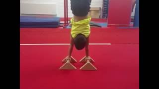Cimnastika