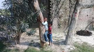 india funny video