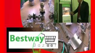 Bestway Group: A road to development