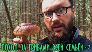Поход за грибами всей семьёй - 2 (2019)