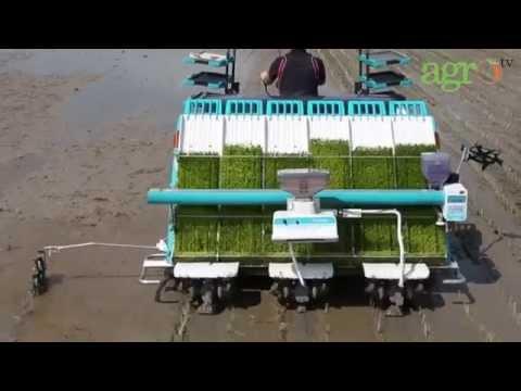 Agro TV - Sudah Saatnya Menggunakan Rice Transplanter