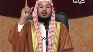 رومانسية اهل الجنة | الشيخ الشنقيطي